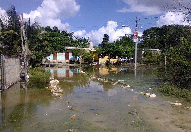 Existe el riesgo de que el nivel del agua siga subiendo. (Rossy López/SIPSE)