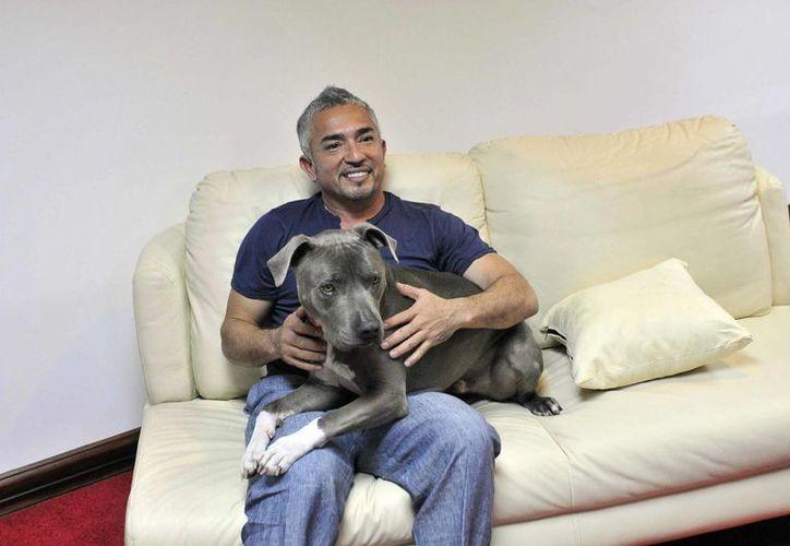 César Millán está en Bogotá para ofrecer una demostración de sus habilidades con los perros. (EFE)
