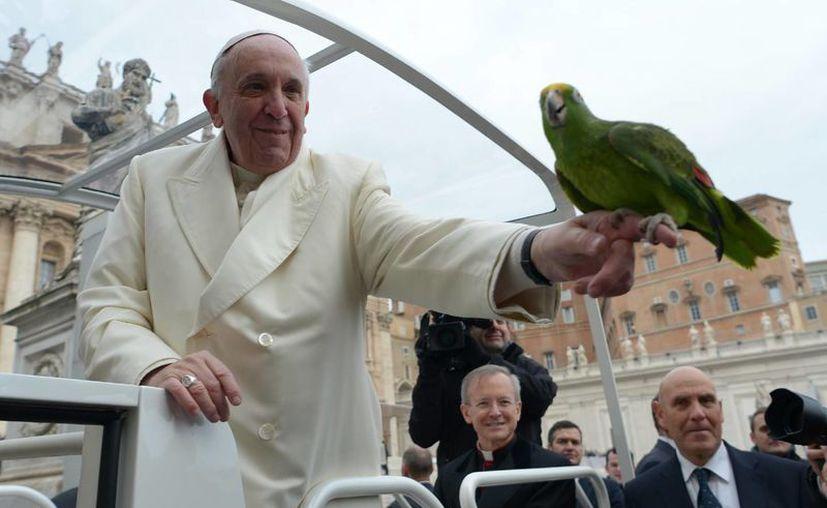 El Papa saludó a cientos de artistas circenses en la Plaza de San Pedro, uno de los cuales le entregó un simpático papapayo verde que sostuvo por unos momentos. (Agencias)