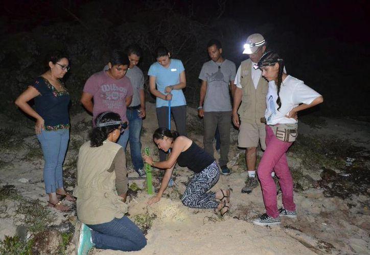Los asistentes fueron trasladados al Parque Eco-turístico Punta Sur, para realizar la parte práctica. (Irving Canul/SIPSE)