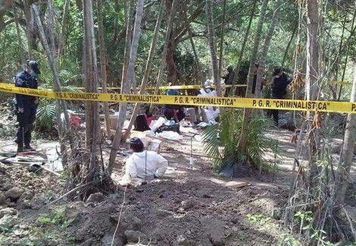 Los trabajos para exhumar los restos humanos se iniciaron durante el mediodía de ayer en una huerta de cocos. (Milenio)