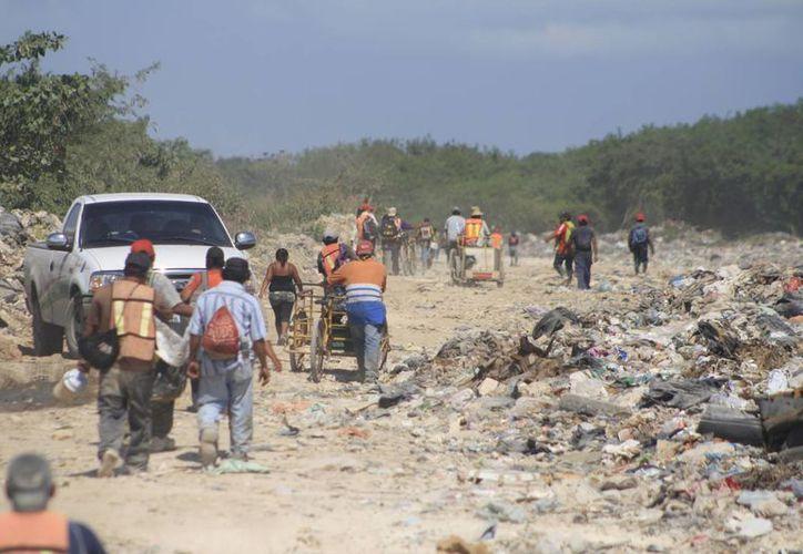 Los pepenadores del relleno sanitario de Chetumal exigen mejoras en el pago de los productos reciclables. (Harold Alcocer/SIPSE)
