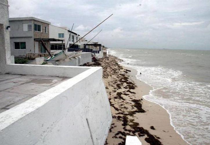 La zona más afectada es la costa norte de Yucatán, que es densamente poblada. (SIPSE/Archivo)