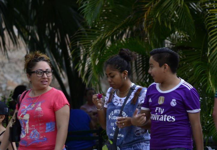Se organizan mediante colectivos en su comunidad para no hacer la labor solas. (Daniel Sandoval)