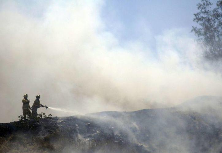 Actualmente hay dos incendios activos en el país. (Archivo/Notimex)