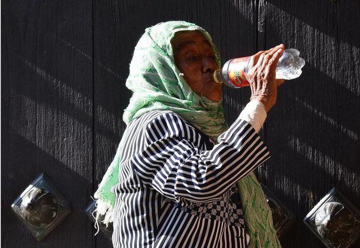 El calor obligó a los meridanos a rehidratarse constantemente. (Luis Pérez/SIPSE)