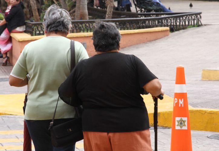 """La Asociación Civil """"Alzheimer del Sureste"""" trabajará en un censo para recabar información actualizada sobre esta enfermedad en Yucatán."""