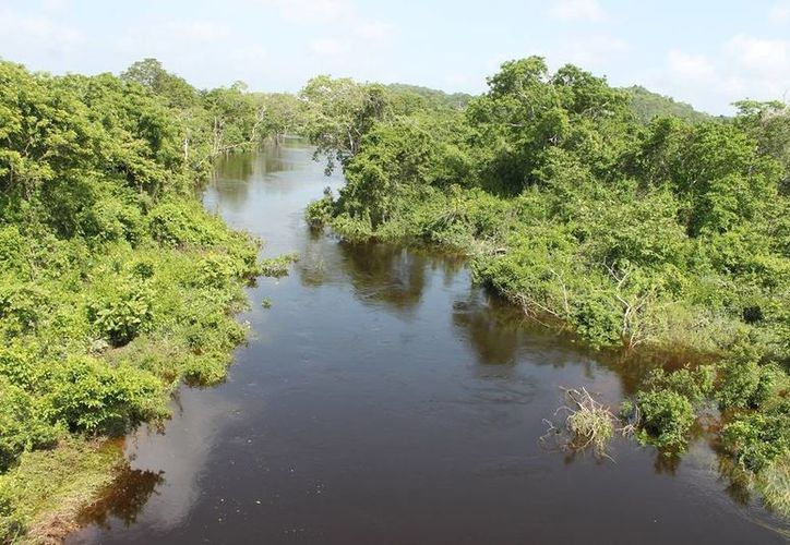 Representantes pecuarios solicitaron una mayor vigilancia en la Ribera del Río. (Edgardo Rodríguez/SIPSE)