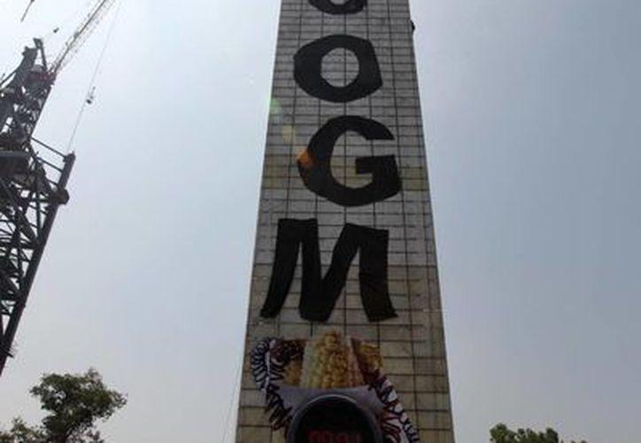 """Los manifestantes lograron colgar el mensaje """"No OMG (Organismos Genéticamente Modificados)"""". (Notimex)"""