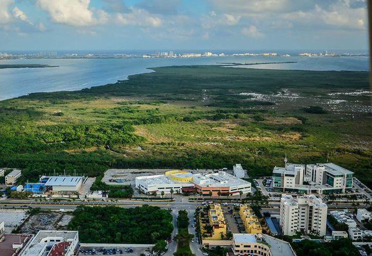 El Ecoparque Cancún estará en el área Natural Portegida, Flora y Fauna Manglares de Nichupté. (Israel Leal/SIPSE)