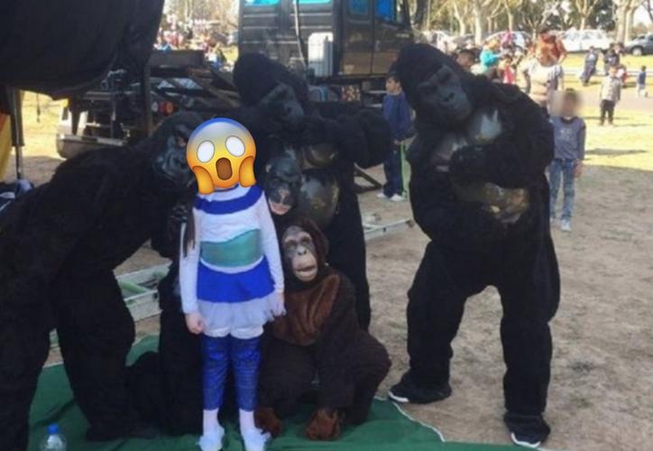 De acusaba de que los gorilas y un tigre estaban siendo sometidos a maltratos. (Foto: Twitter)