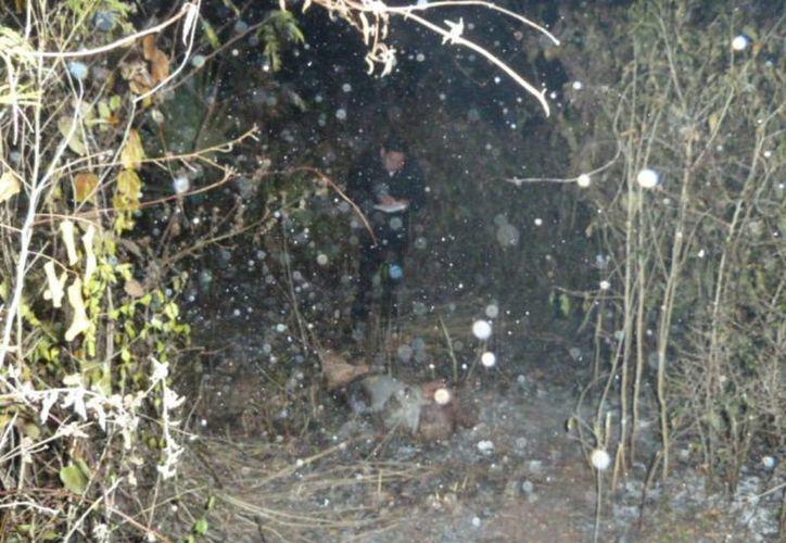 En una brecha de la cañada de la milpa fue hallado el cuerpo sin vida de Buenaventura Meseta Chimal de 83 años. (Carlos Yabur/SIPSE)