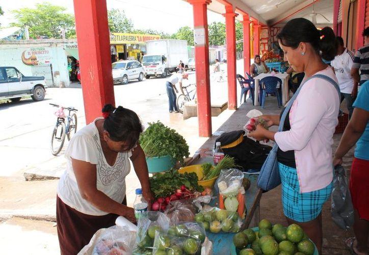 Los dictámenes expedidos por el municipio comprenden varios giros; el gobierno municipal únicamente supervisa al comercio ambulante y al resto de los establecimientos no les aplican revisión alguna. (Juan Carlos Gómez/SIPSE)