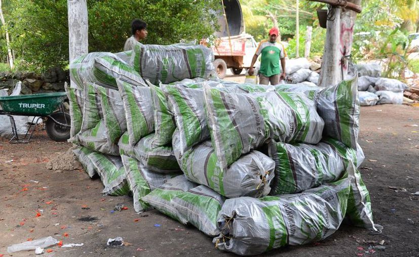 Los intermediarios les vienen a pagar a dos pesos el kilo. (Juan Rodríguez/ SIPSE)