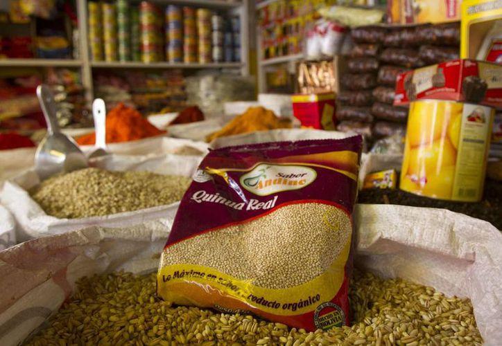 Según datos del Instituto Boliviano de Comercio Exterior, en 2013 Bolivia produjo 61 mil 182 toneladas de quinua, de las que el 56 por ciento se destinó a la exportación. (Archivo/EFE)