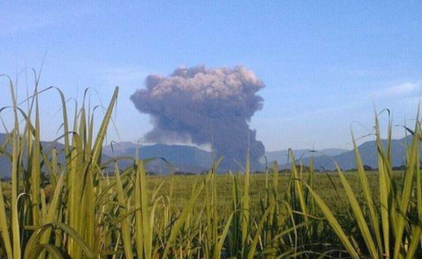 La explosión se dio en una zona de cañales, ubicada a orilla de la carretera estatal que va de Zapoapan a Campo Chico. (Milenio)