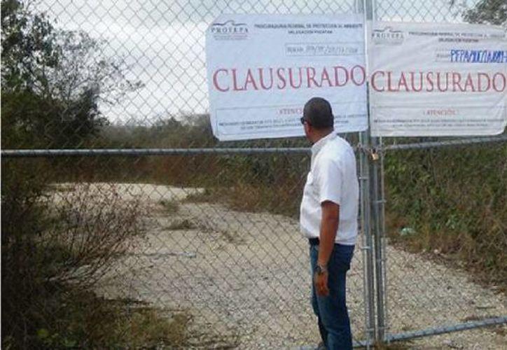 Los responsables de la obra no contaban con las autorizaciones necesarias: devastaron flora de selva baja caducifolia protegida por la autoridad ambiental. (Profepa)