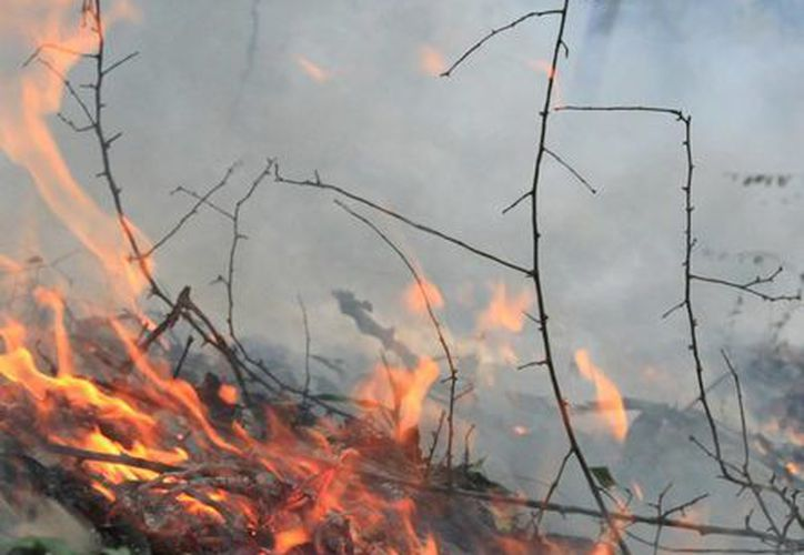 El incendio denominado Makech 1 ya está finiquitado. (Ángel Castilla/SIPSE)