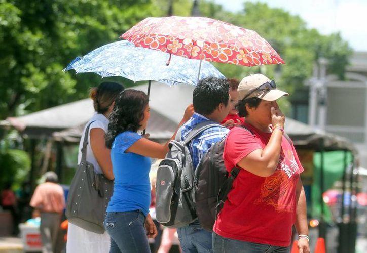 Este domingo, la temperatura máxima en Mérida fue de 36.5 grados. (Amílcar Rodríguez/Milenio Novedades)