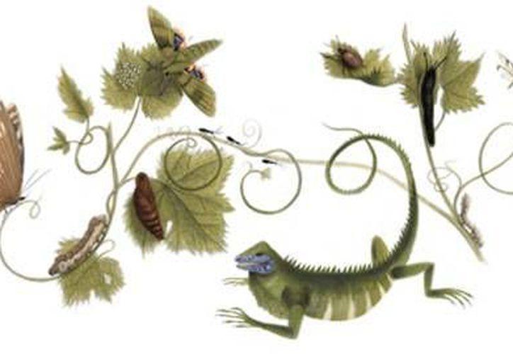 Los dibujos de plantas, serpientes, arañas, iguanas y coleópteros tropicales realizados por su mano son considerados hasta hoy como obras de arte. (Google)