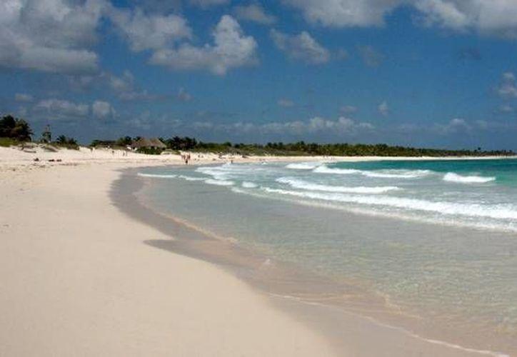 La cadena de delfinarios Delphinus es la organizadora de la limpieza de tres kilómetros de playa, en Chemuyil. (Redacción/SIPSE)
