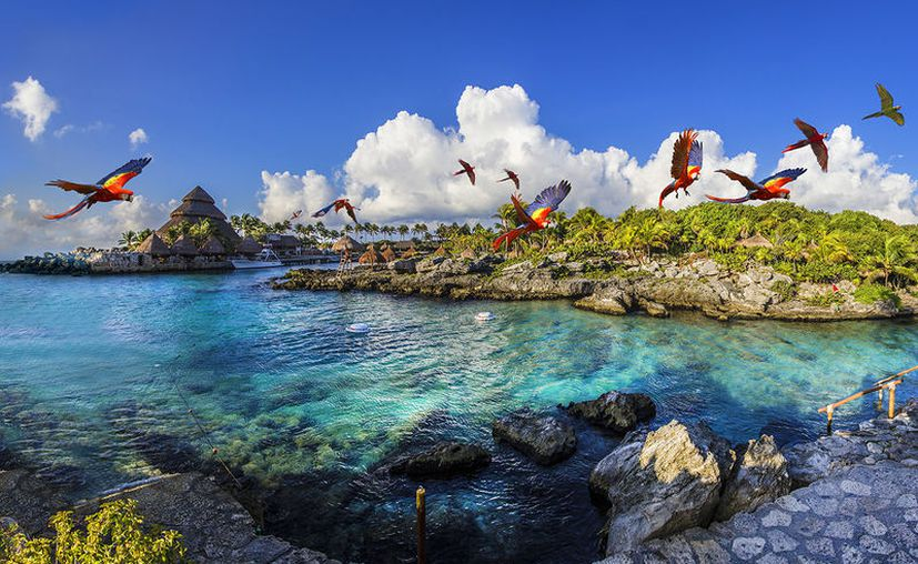 El parque Xcaret, de la Riviera Maya, ha sido nominado para ser galardonado en los premios Travvy Awards 2018. (Redacción/SIPSE).
