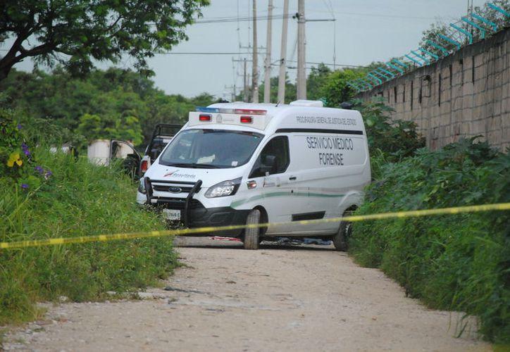 Fue encontrado un muerto a espaldas del encierro de los autobuses de la empresa Turicun. (Redacción)