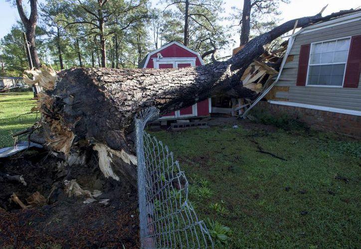Un árbol cayó sobre una casa rodante en la comunidad Pike Road Village, en Alabama, Georgia. (Agencias)
