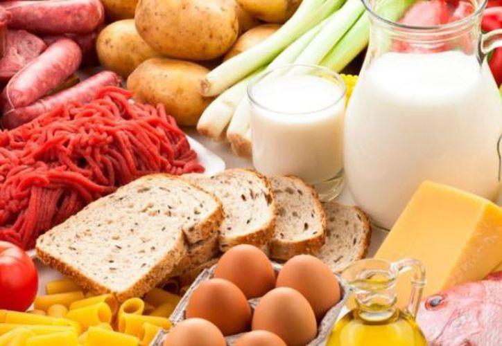 Cada alimento que se consume proporciona cierta cantidad de calorías que ayudan al organismo a tener la energía suficiente para las actividades diarias. (SIPSE)