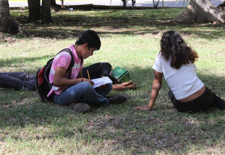 Dos de cada 10 jóvenes de las zonas rurales no concluyen sus estudios de telebachillerato. (Alejandra Carrión/SIPSE)
