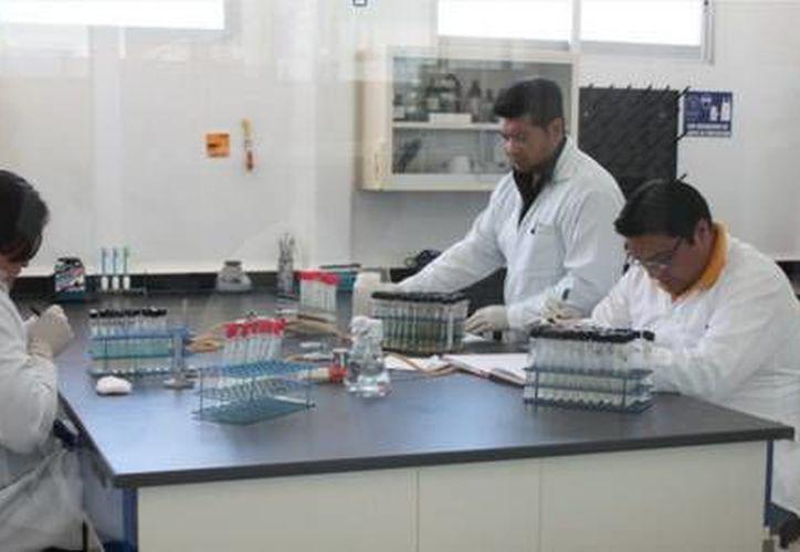 El Gobierno del Estado organizó un desayuno para los químicos del Laboratorio Estatal de Salud Pública. (Redacción/SIPSE)