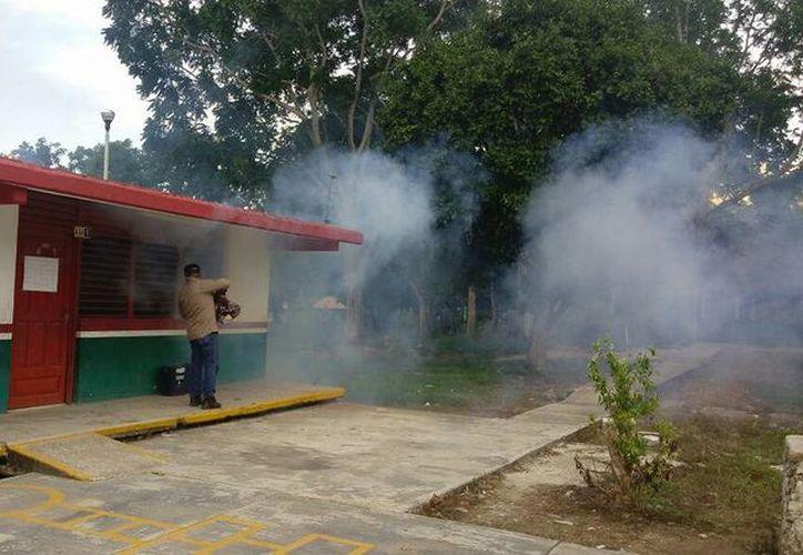 Personal de la Secretaría de Salud se dio a la tarea de fumigar los planteles educativos de la zona sur del estado. (Joel Zamora/SIPSE)