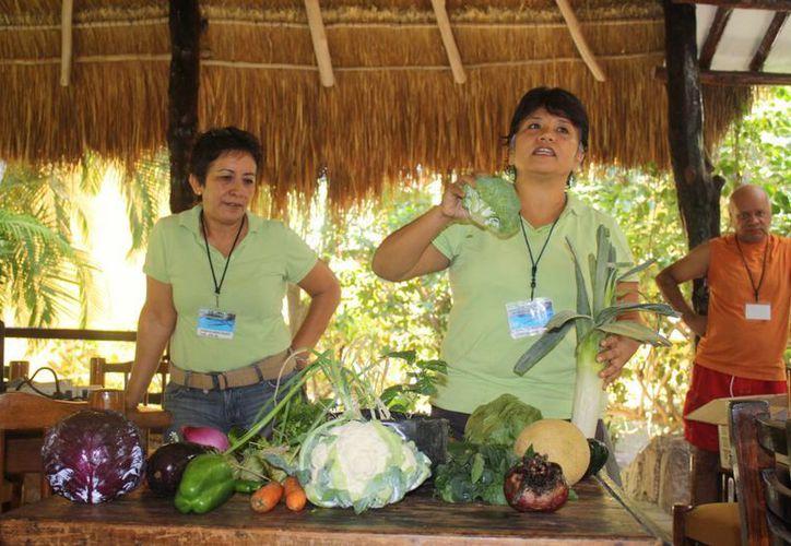 A largo plazo se pretende que gran parte del menú ofrecido en los hoteles sea preparado con alimentos que crecieron sin fertilizantes. (Yenny Gaona/SIPSE)
