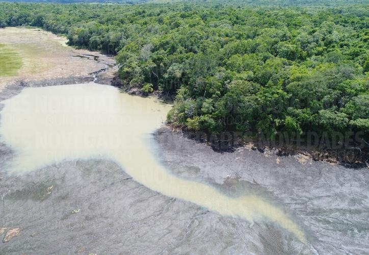 El agua está volviendo a su cauce de manera natural en algunos de los puntos   donde 'desapareció' la laguna. (Israel Leal/SIPSE)