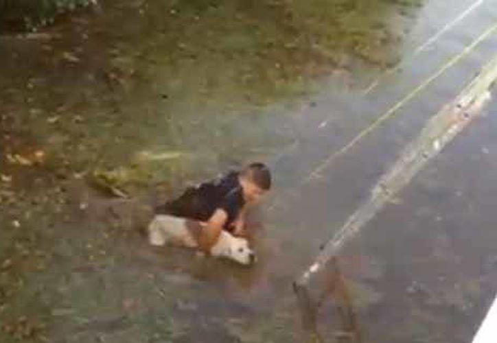 El bombero logró sacar al perro sin contratiempos. (Redacción/SIPSE)