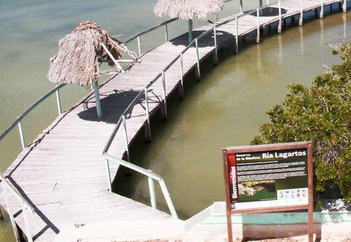 Yucatán cuenta con 674 mil 244 hectáreas bajo algún tipo de protección y se distribuyen entre siete Áreas Naturales Protegidas (ANP) estatales, una municipal y cuatro federales.