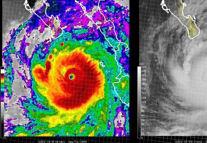 En 2014, 28 tormentas afectaron el territorio mexicano; en la imagen, el huracán 'Odile' poco antes de tocar tierra en Baja California Sur. (Archivo/Notimex)