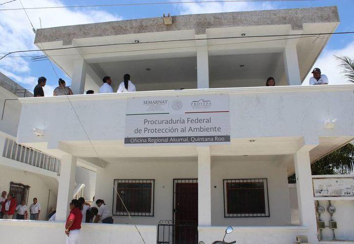El titular federal de la Profepa inauguró este jueves las instalaciones de la dependencia en Akumal. (Sara Cauich/SIPSE)