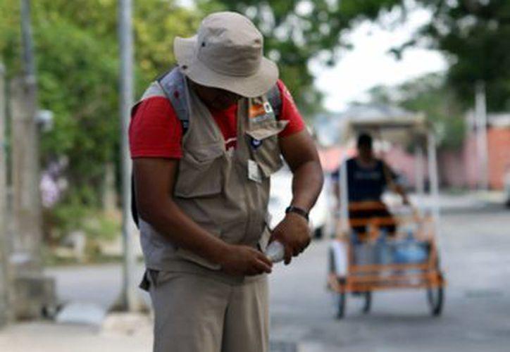 Las autoridades de salud recomiendan a la población  no bajar la guardia y contribuir a través de un patio y calles limpias de cacharros y recipientes. (Milenio Novedades)