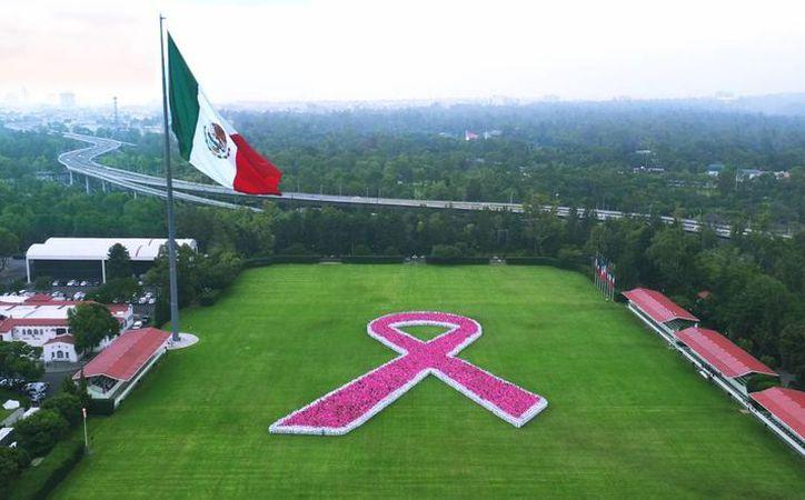 Este 19 de octubre se conmemora el Día Mundial contra el cáncer. (Archivo/Notimex)