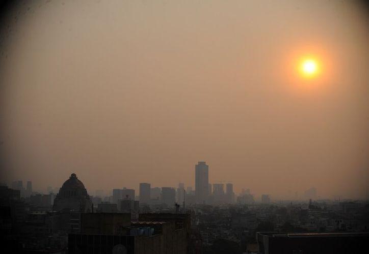Los capitalinos reacciones con tristeza y asombro ante los efectos de la contaminación. (Internet)