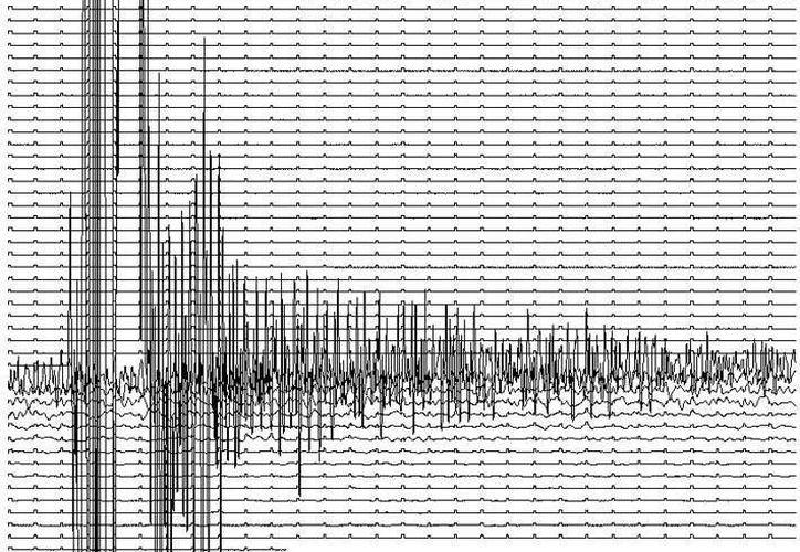 """Aseguran que el número de temblores """"puede seguir aumentando"""", esto después del terremoto de  6.4 grados. (Archivo SIPSE)"""