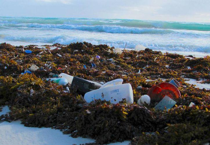 La basura que más abunda en el mar son las botellas de plástico, tapas, botes, tiras elásticas, bolsas, sillas, juguetes, sandalias y diversos utensilios. (Archivo/SIPSE)