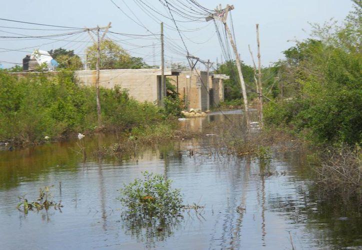 En algunas zonas de Bonfil el nivel del agua desciende lentamente, debido a que el manto freático esta saturado. (Teresa Pérez/SIPSE)