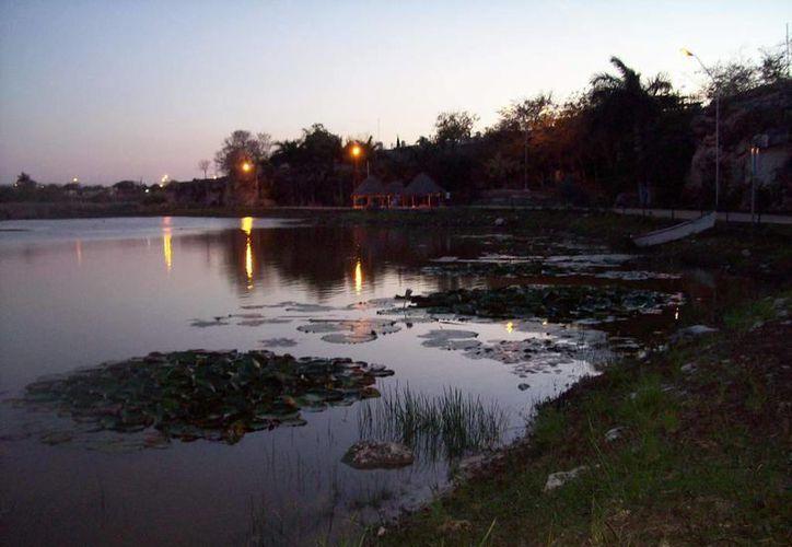 Panorámica del Aquaparque ubicado en el oriente de Mérida. (Jorge Moreno/SIPSE)