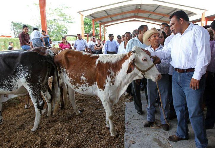 Zapata Bello refrendó su compromiso de entregar los apoyos con puntualidad para que los productores puedan utilizarlos de forma oportuna. (Cortesía)