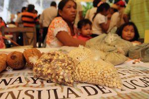 Feria de Semillas, en Maní, Yucatán