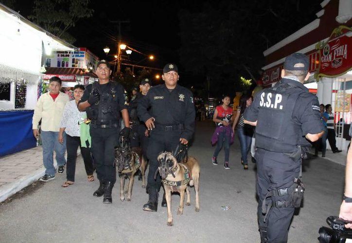 El operativo incluye recorridos por el recinto ferial con perros. (Milenio Novedades)