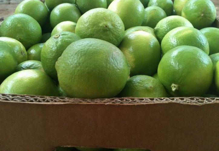 El limón fue el producto que más incidencia tuvo en el aumento de precios en la primera quincena de febrero, según el Inegi. (Agencias/Contexto)