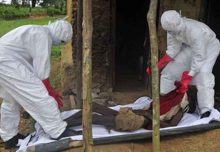 Socorristas retiran el cadáver de un hombre supuestamente muerto por ébola, en las afueras de Monrovia, Liberia. (Agencias)